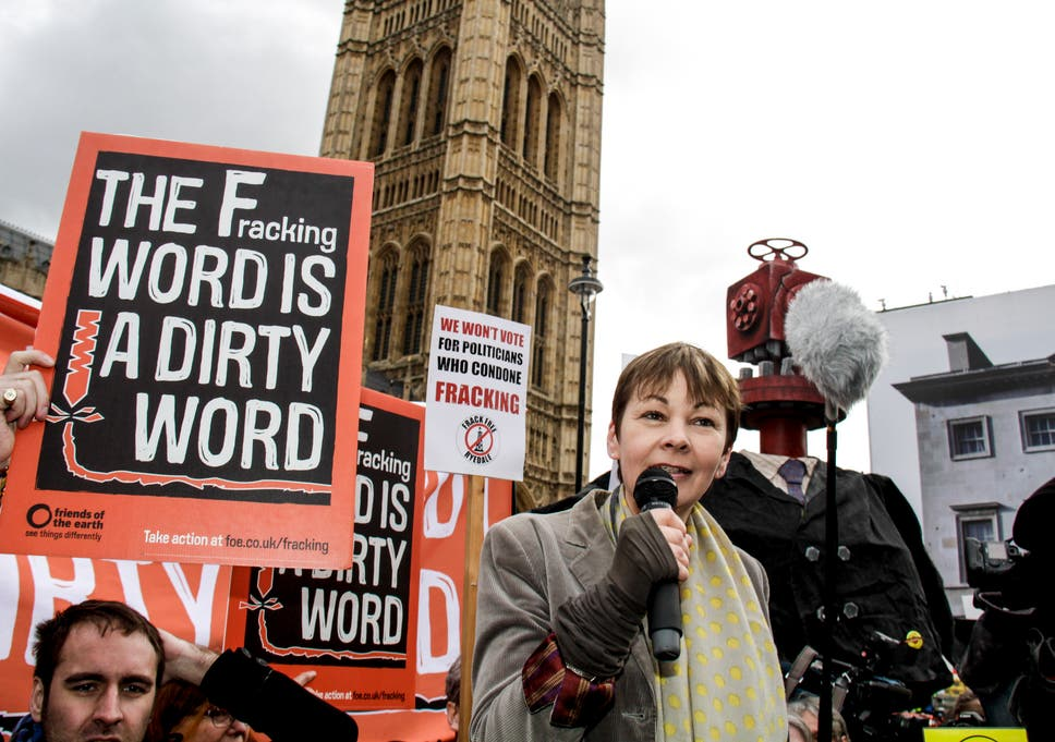 21d3e7f657ae Caroline Lucas from the Green Party with anti-fracking campaigners outside  Parliament this week.