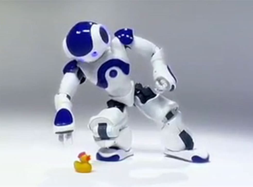 Nao was born in 2006 after years of development