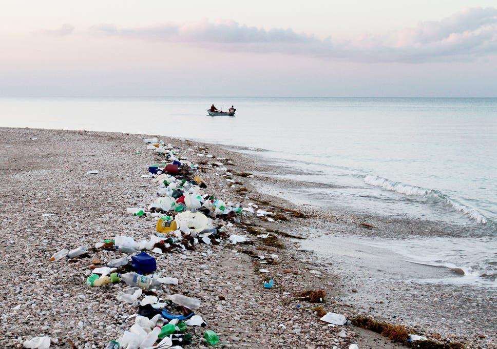 Garbage dumping in bangalore dating