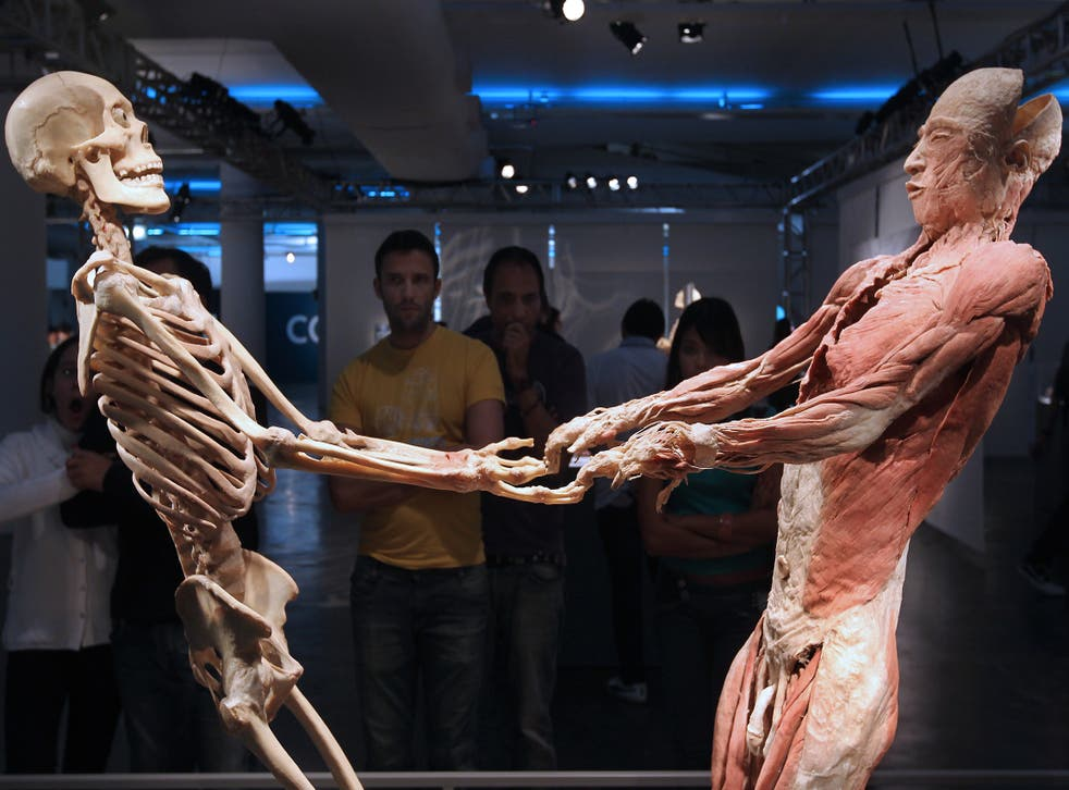Visitors look at plastinated human bodies at 'Body - The Exhibition', in Sao Paulo, Brazil; the technology to store a high-resolution, three-dimensional copy of body organs and tissues already exists