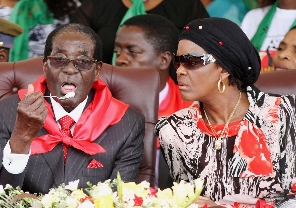 Image result for mugabe party