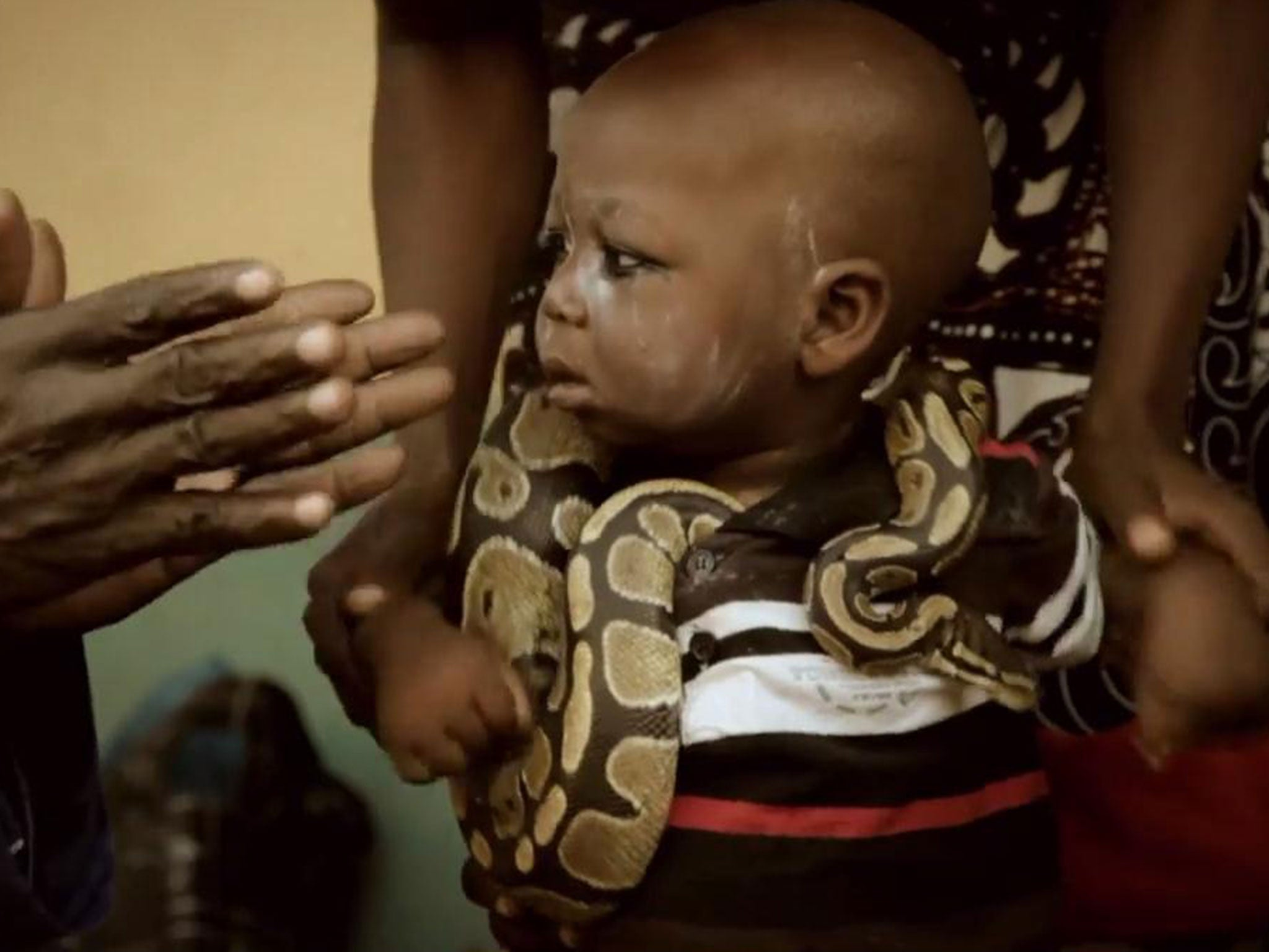 Meet the mysterious Nigerian men who play with hyenas and snakes for show [Video] 1