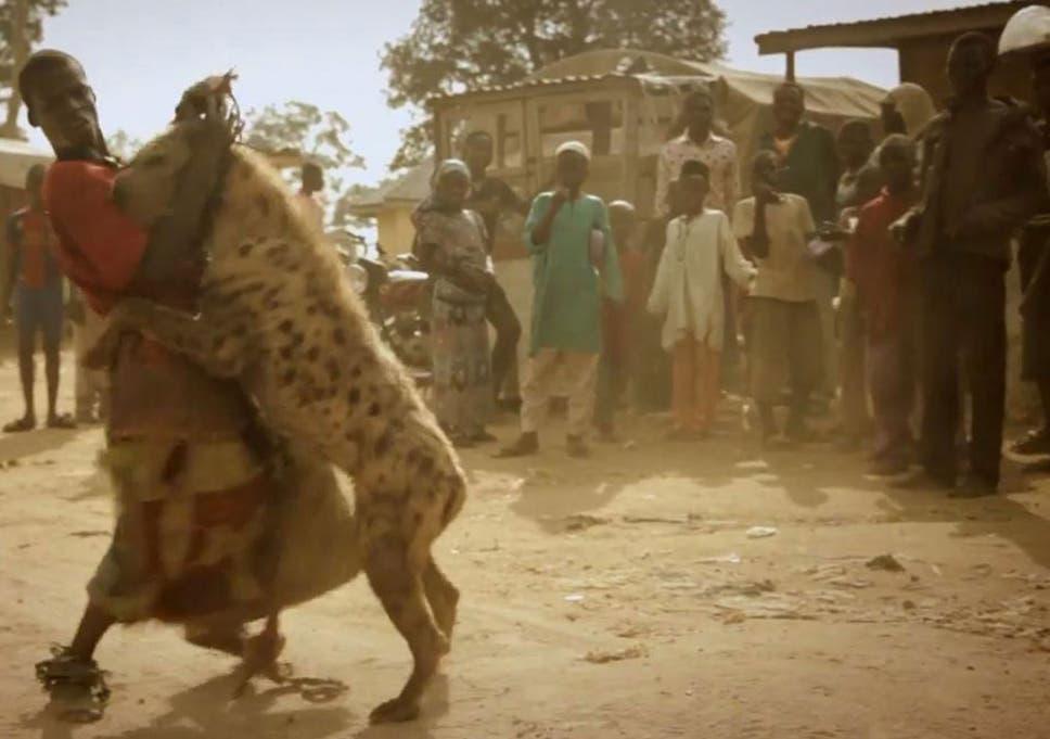 [Image: v2-Hyena-boys-1.jpg?w968h681]