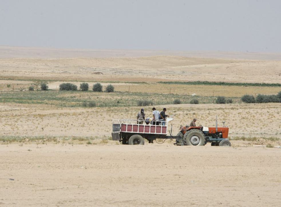 Farmers in Syria's drought-hit Hasaka region. The UN is now giving food aid to almost 200,000 people