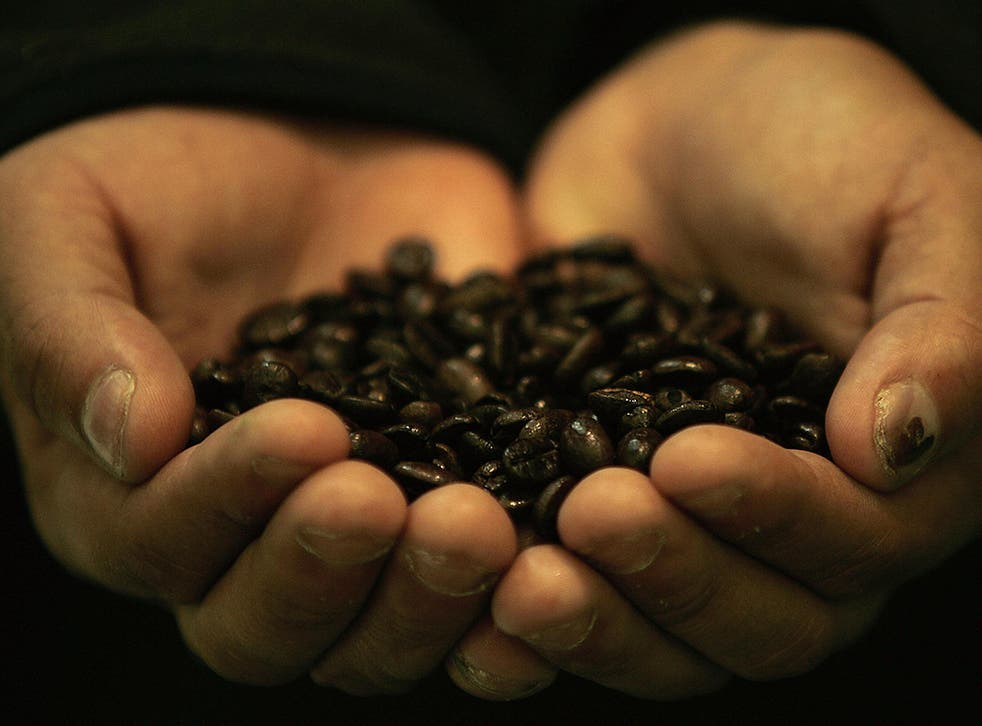 Honduran farmer Dennis Alfredo Cruz shows roasted coffee beans at a Fair Trade event on the sidelines of the World Trade Organization Summit (WTO) in Hong Kong, 16 December 2005