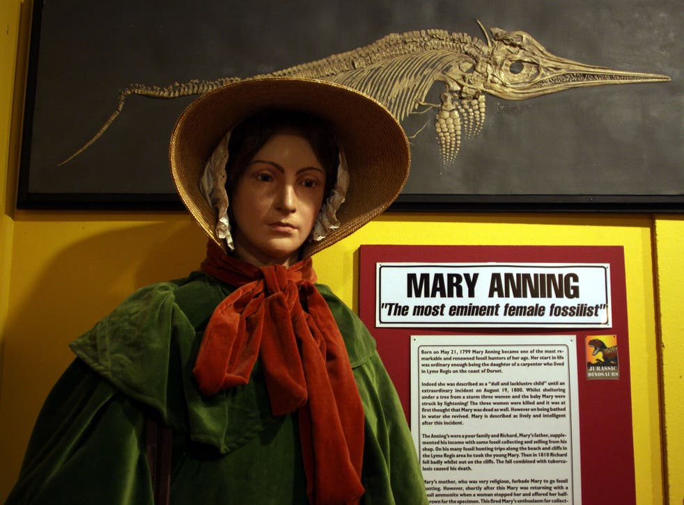 Mary Anning was a leading fossil collector (Richard Gardner/REX)