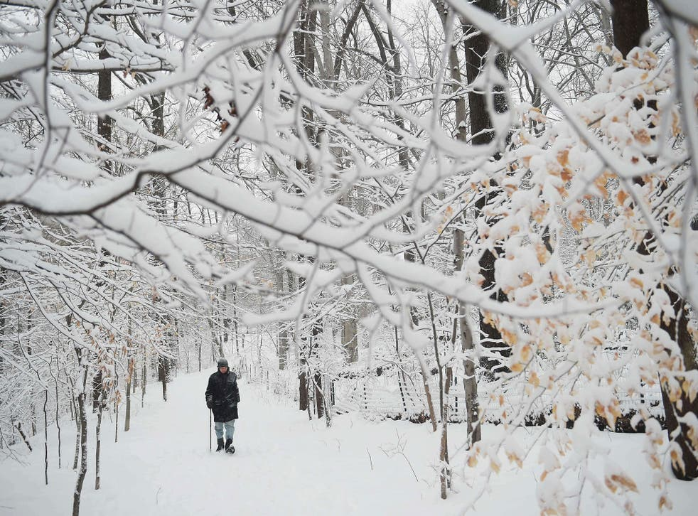 Recent cold weather in the US could delay interest rate rises there and in the UK
