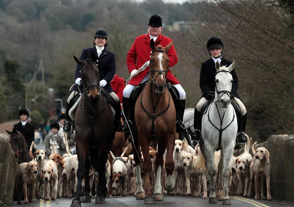 Prominent fox hunting supporters step up Tory support – and expect repeal of ban in return | The Independent