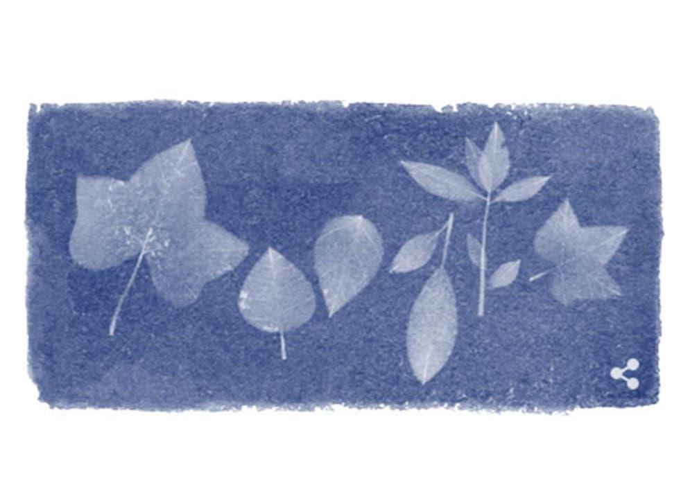 Google celebrates the 216th birthday of Anna Atkins, botanist and photographic pioneer