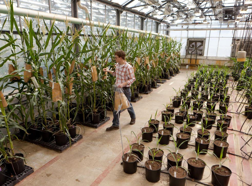 The deal could create the world's biggest supplier of seeds and pesticides.