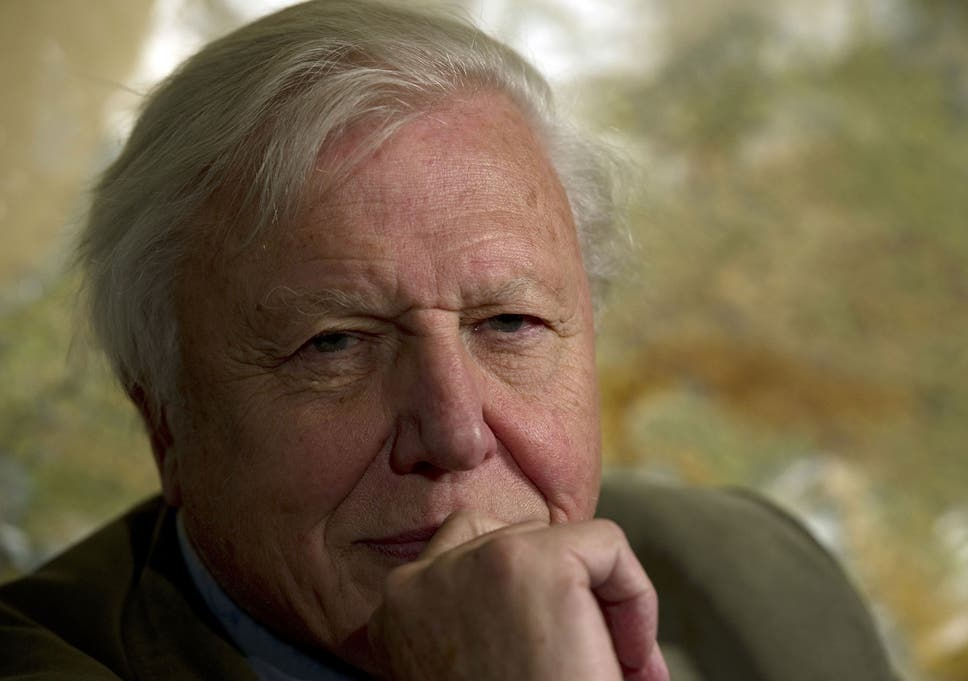 Sir David Attenborough turns 90: Broadcaster explains why gender