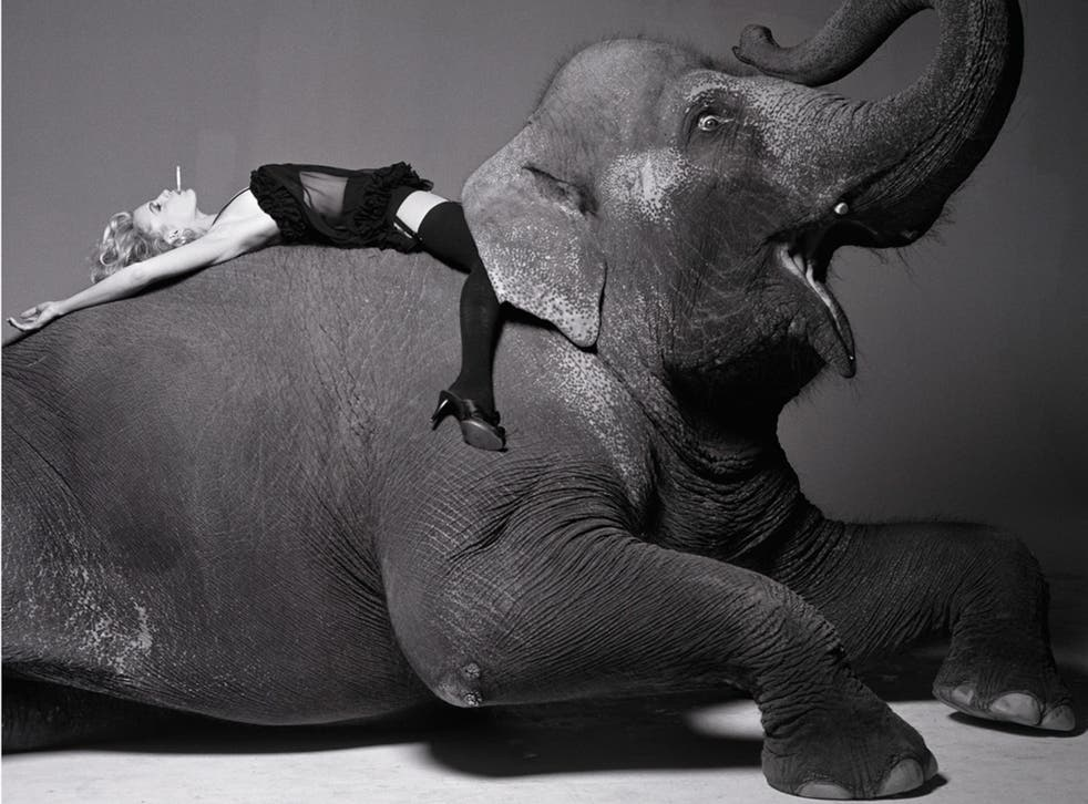 Darryl Hannah on elephant (1992) by Michel Comte