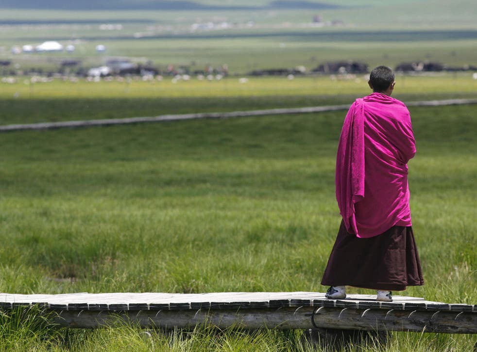 A Tibetan monk surveys the wet Re'er grassland at Meiduo Lake, China. Grassland such as this is helping to balance out the demise of the rainforests