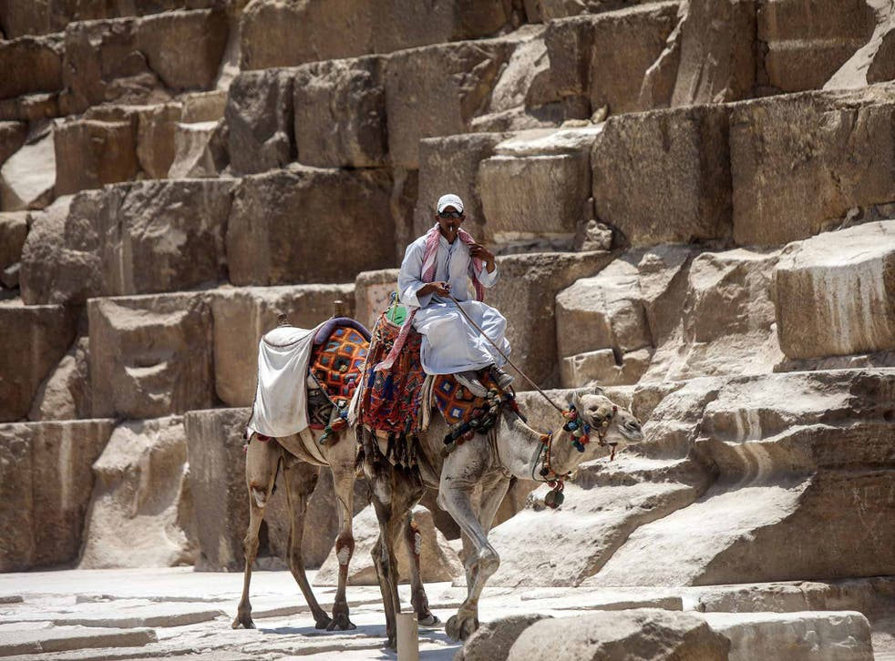 An Egyptian camel owner waits for tourists at the Giza pyramids, south of Cairo