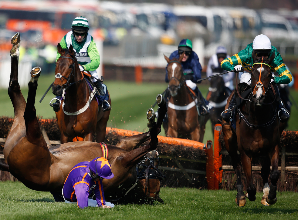 The horse Arctic Fire falls on day one of the Grand National 2015