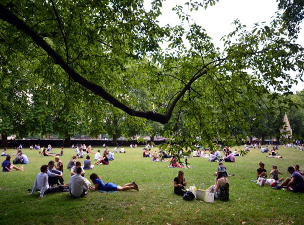 People sit in a park during hot weather in central London
