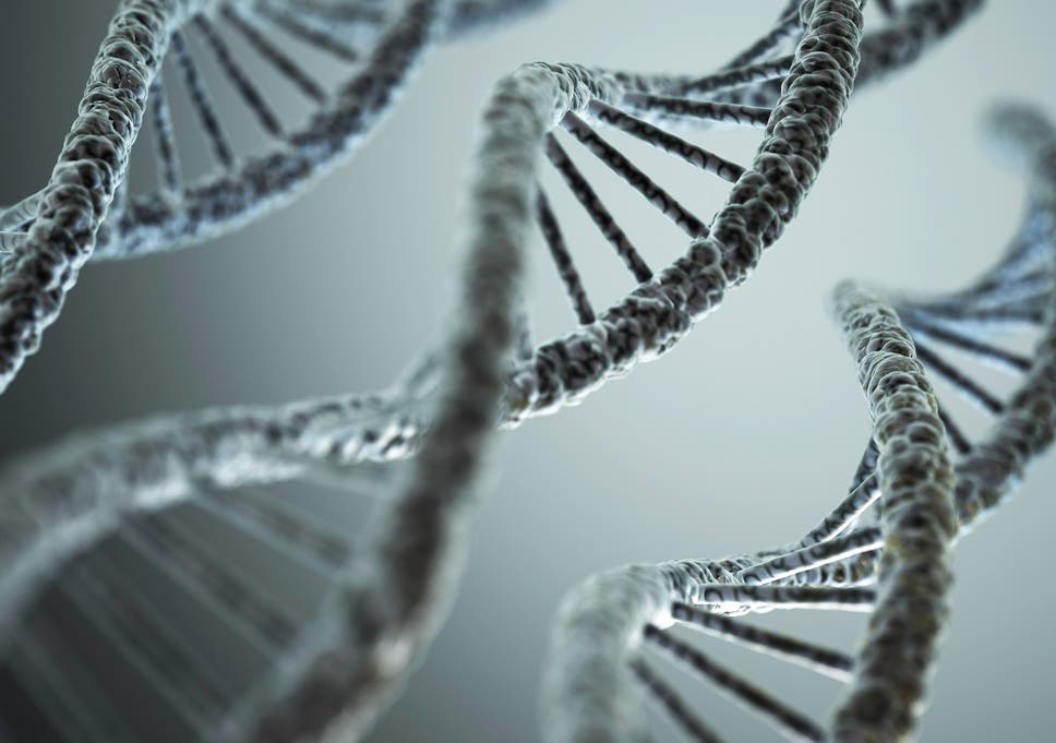 Study Links Autism To Epigenetic >> Dna Changes Could Explain Why Autism Runs In Families According To