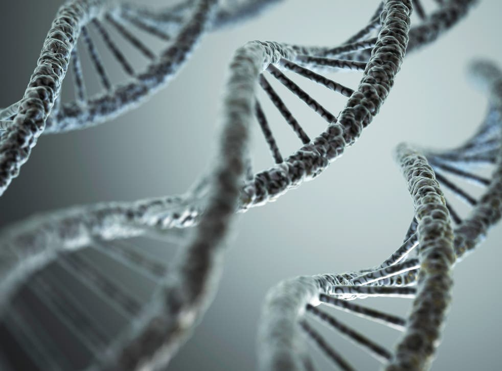 The project has analysed the entire genetic code of more than 2,500 people