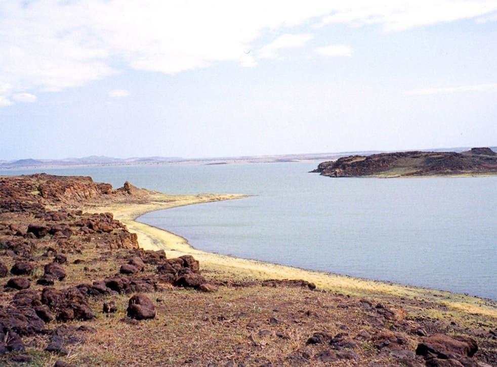 The artefacts were found near Lake Turkana, Kenya