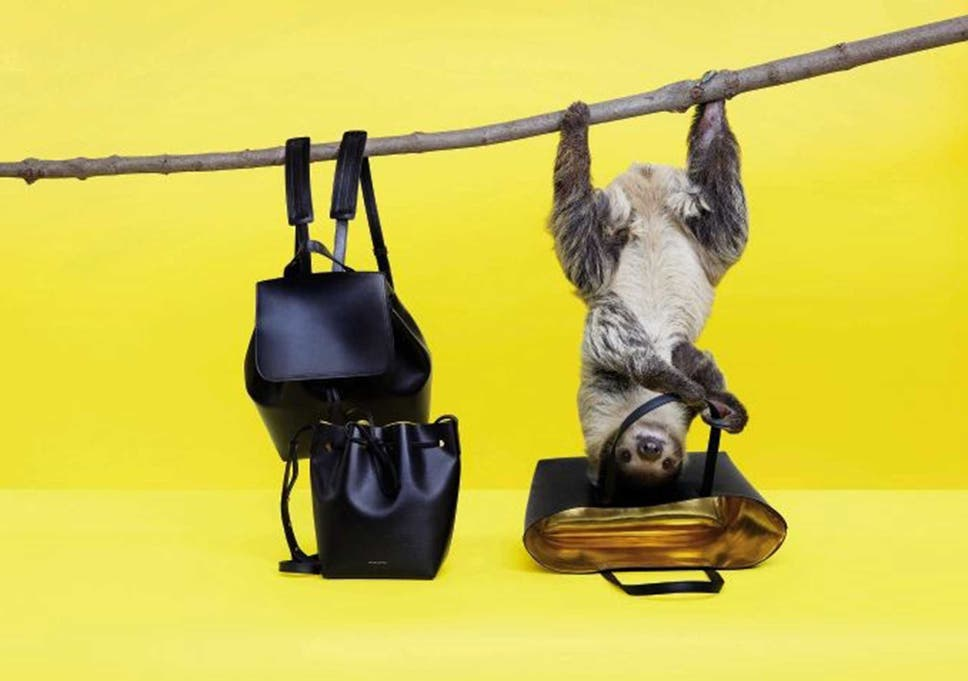 The sloth is now the face (and furry body) of three big fashion