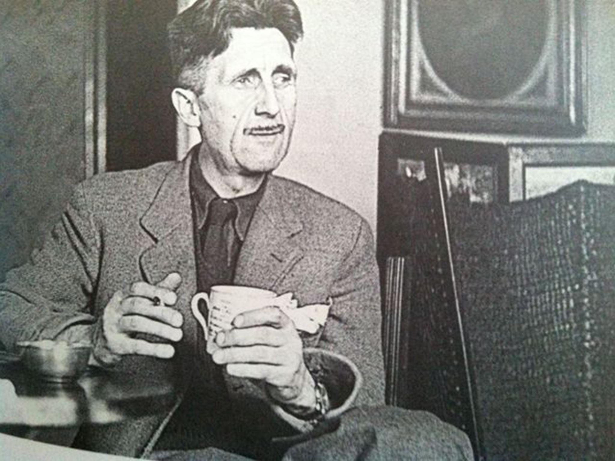 nature studies in praise of george orwell unexpected lover of nature studies in praise of george orwell unexpected lover of the common toad the independent