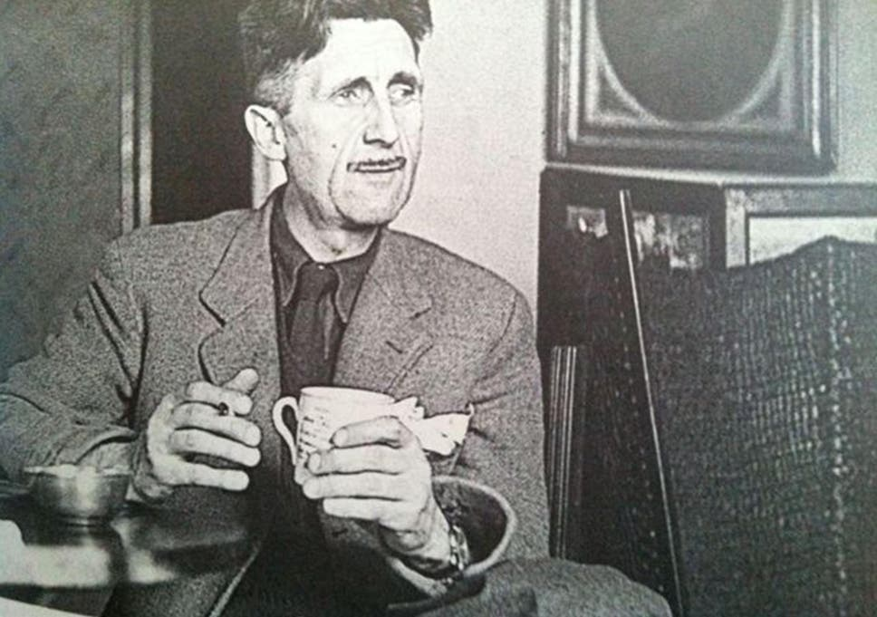 nature studies in praise of george orwell unexpected lover of the