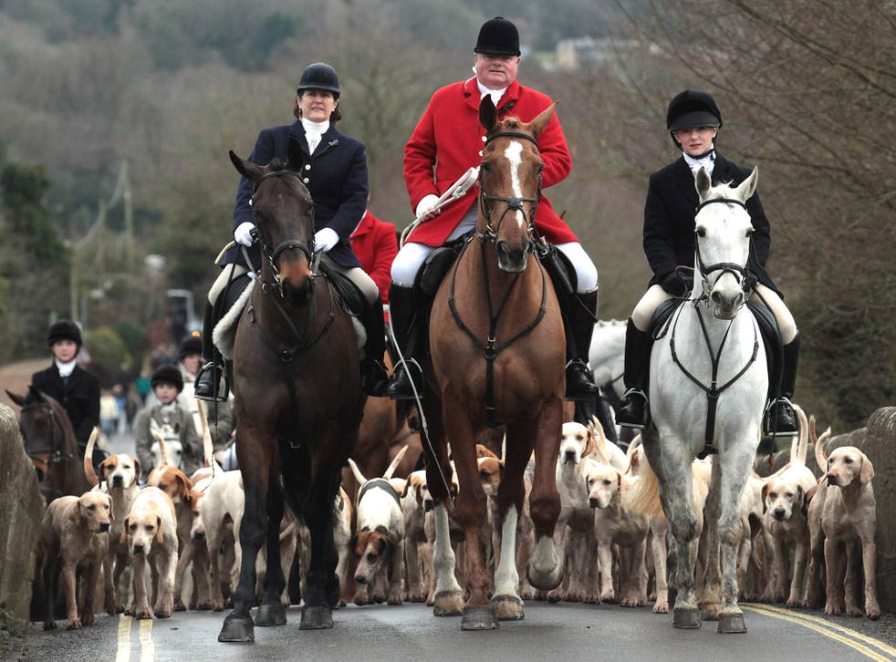 A fox hunt in England