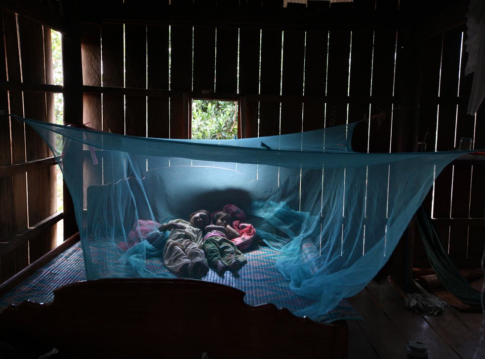 There are an estimated 198 million cases of malaria a year
