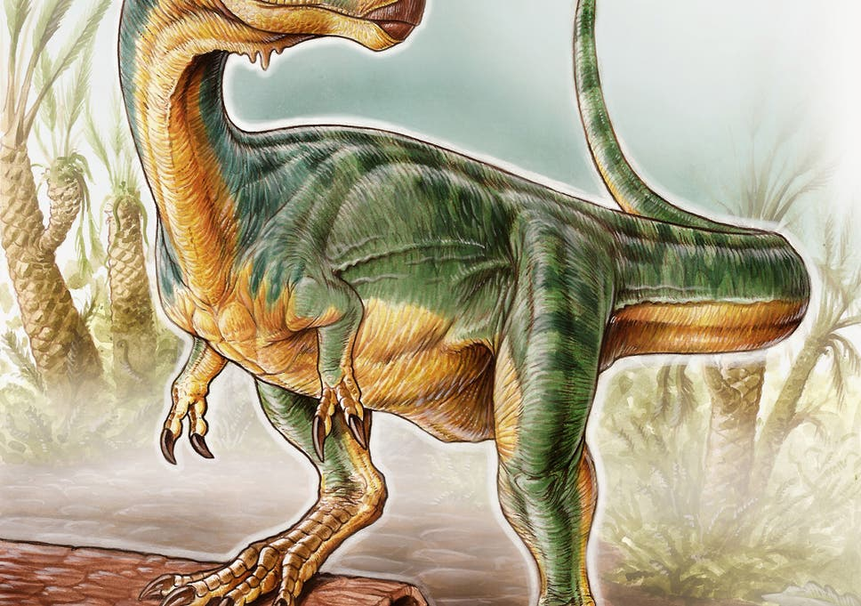 New Tyrannosaurus Like Vegetarian Dinosaur Discovered In Chile