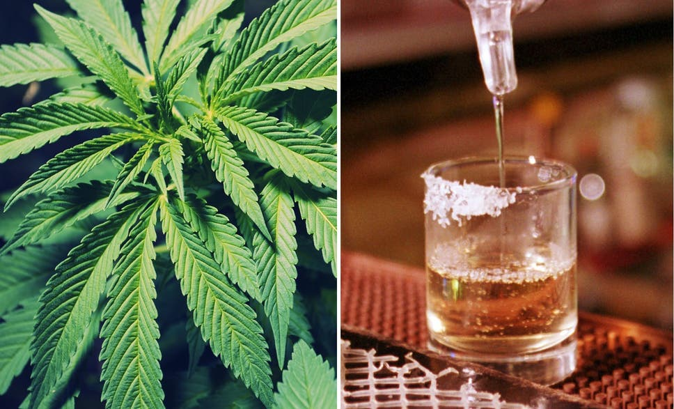 Marijuana Isnt A Gateway Drug If Anything Alcohol Is The Independent