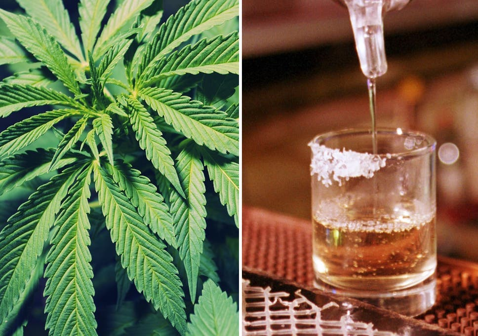 Slikovni rezultat za alcohol drug cannabis