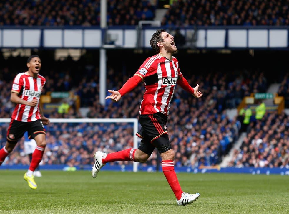 Danny Graham celebrates scoring against Everton