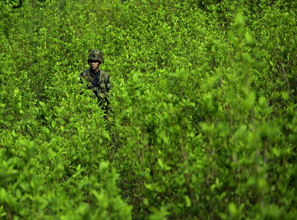A soldier provides security for a coca plantation eradication operation in the mountains of Yali municipality in Colombia