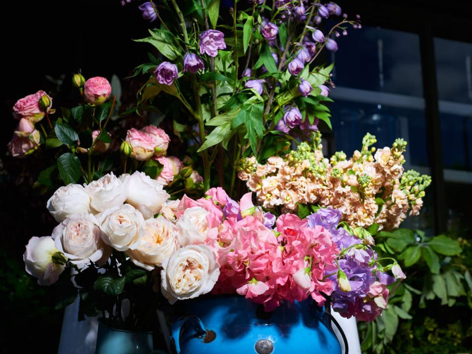 from roses to pretty sweet peas growers join forces to bring native