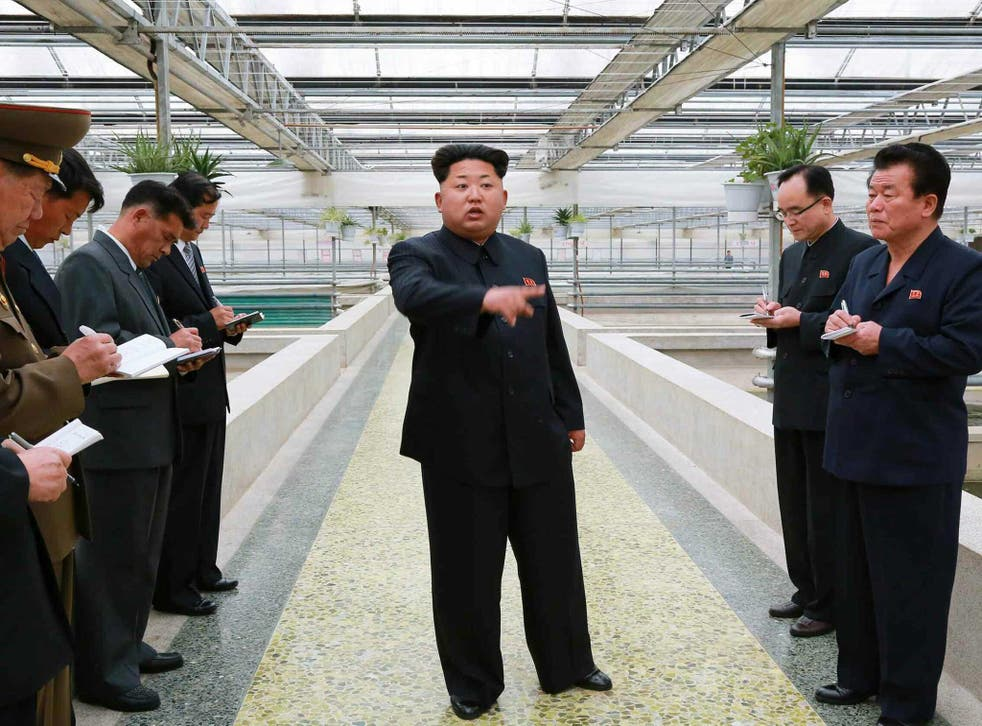 Kim Jong Un was reportedly unhappy with the terrapin factory's efforts
