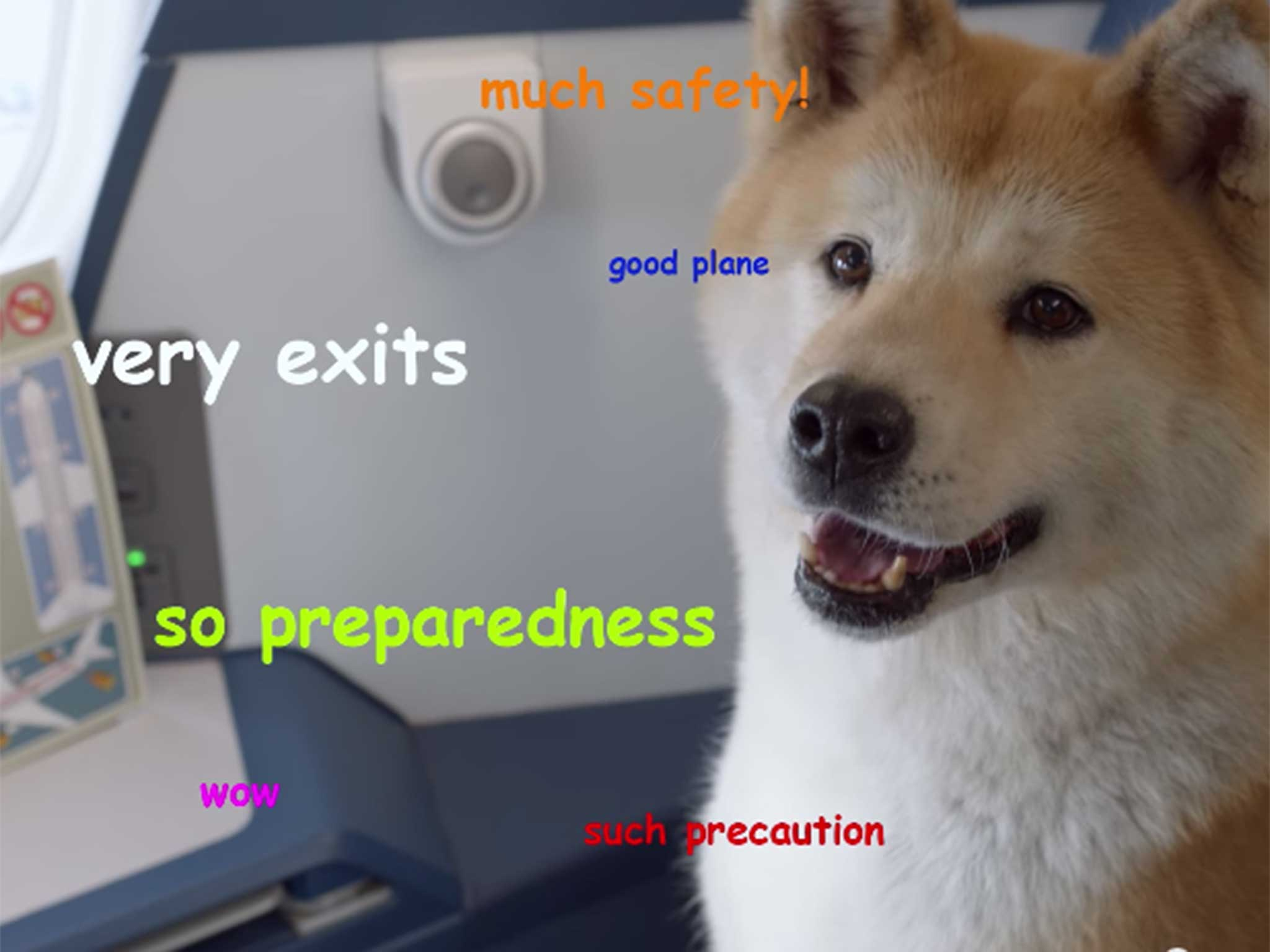 DELTA VIDEO DOG delta creates most watchable safety video using the internet's,Good Plane Memes