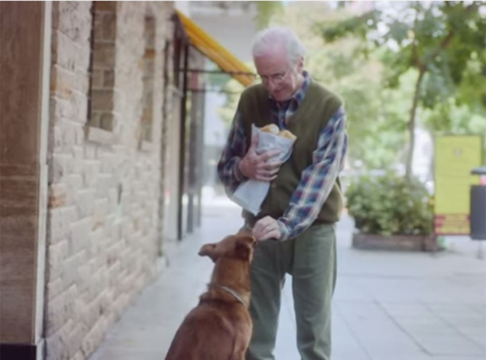 The dog and man in the organ donation advert