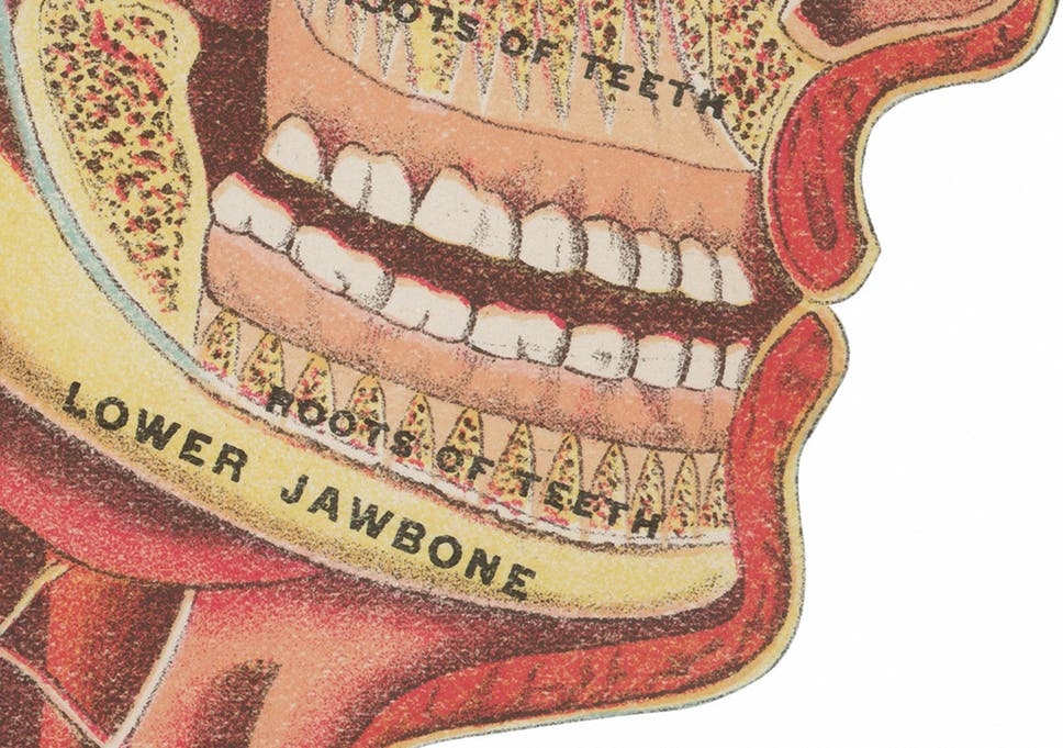 10 ways we damage our teeth – without realising   The Independent