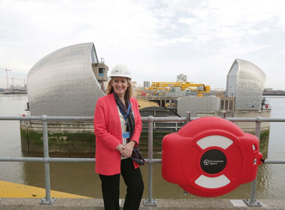 Amber Rudd, the Energy Secretary, says the Thames Barrier design should inspire other infrastructure projects