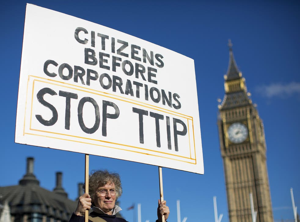 A woman protests the controversial TTIP deal outside Parliament