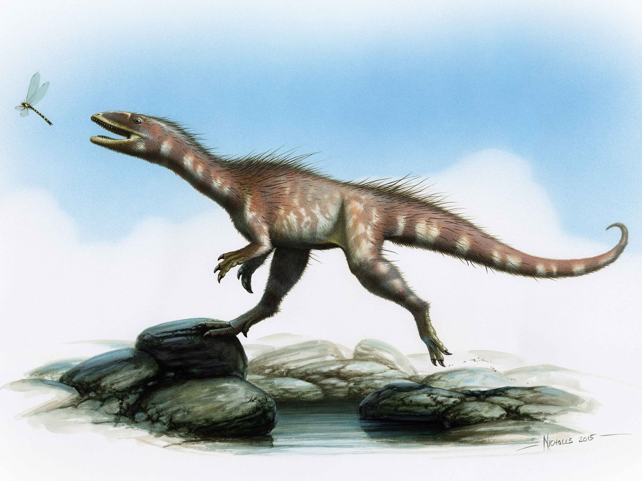 the t rex has a welsh cousin new jurassic era dinosaur species