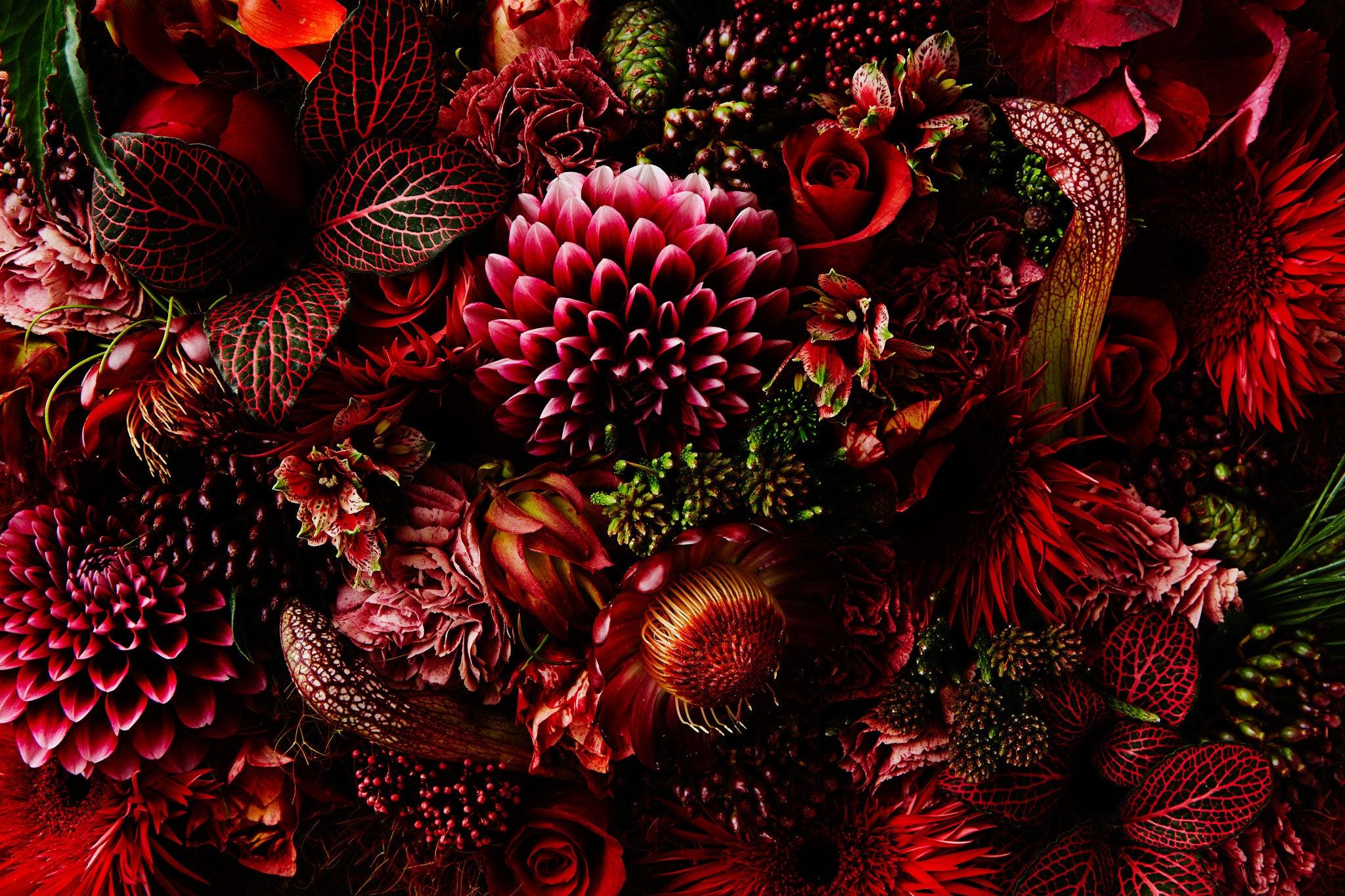 Encyclopaedia Of Flower Ii Makoto Azuma Delights The Art