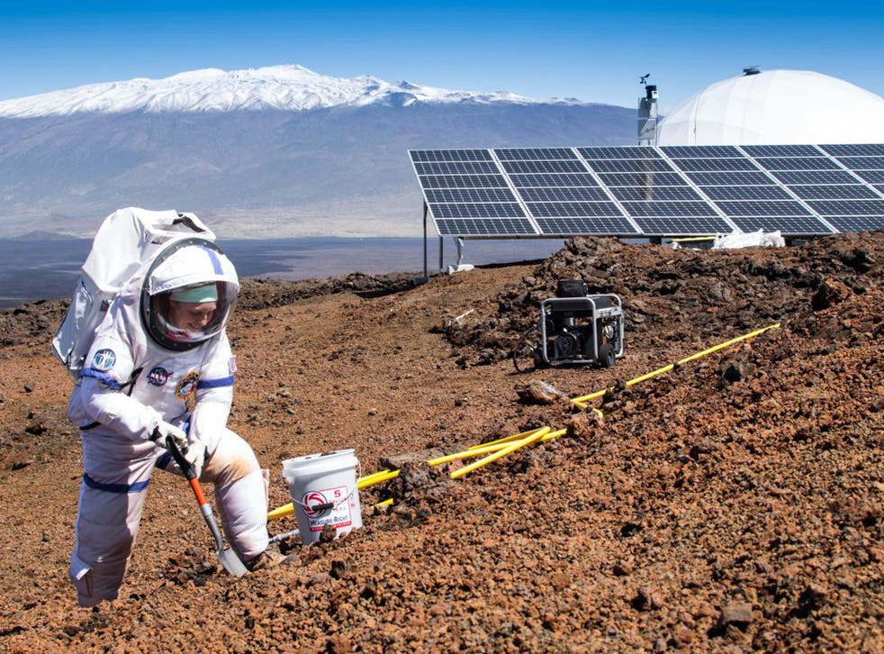 Martha Lenio collects a soil sample on the slopes of Mauna Loa, Hawaii, where the experiment took place