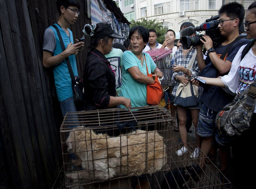 Crowds gathered after Yang Xiaoyun came to the market and announced she wanted to purchase 100 dogs (China Out/AFP/Getty Images)