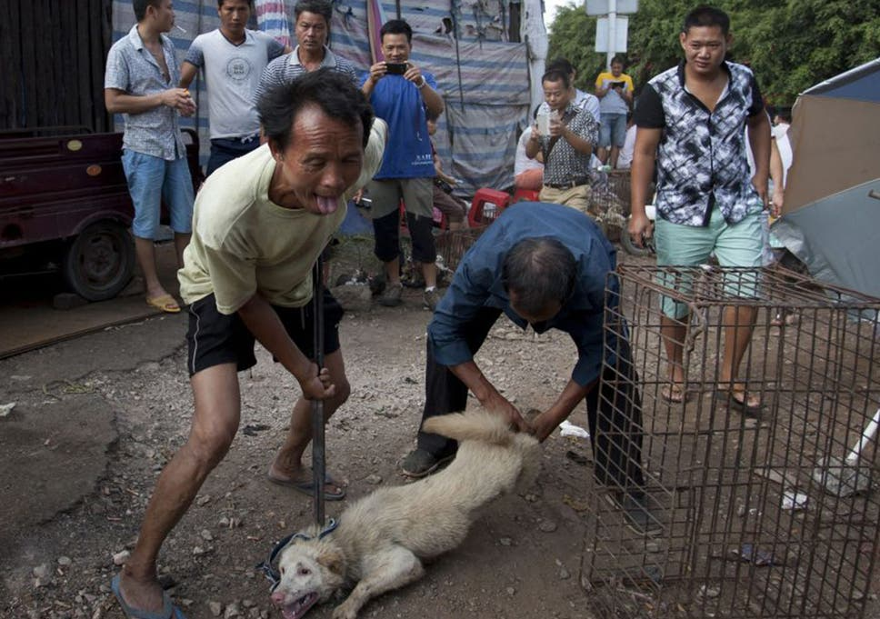 Prostitutes in Yulin
