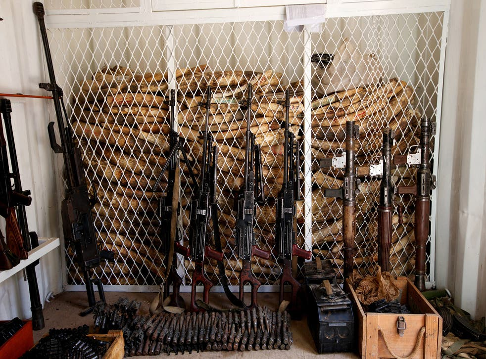 Tusks seized in the Zakouma National Park, in Central Africa, are stacked high