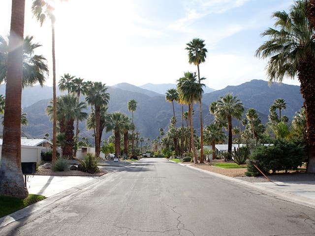 Twin Palms, Alexander development