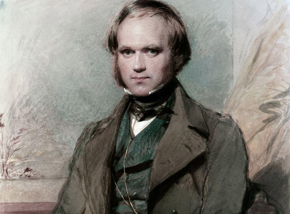 Результат пошуку зображень за запитом charles darwin