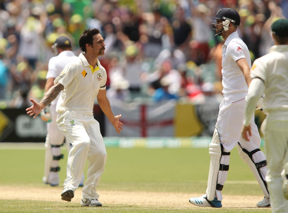 Johnson celebrates after dismissing Jimmy Anderson in the 2013-14 series
