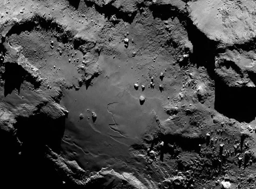 Scientists believe activity by micro-organisms could explain the comet's features